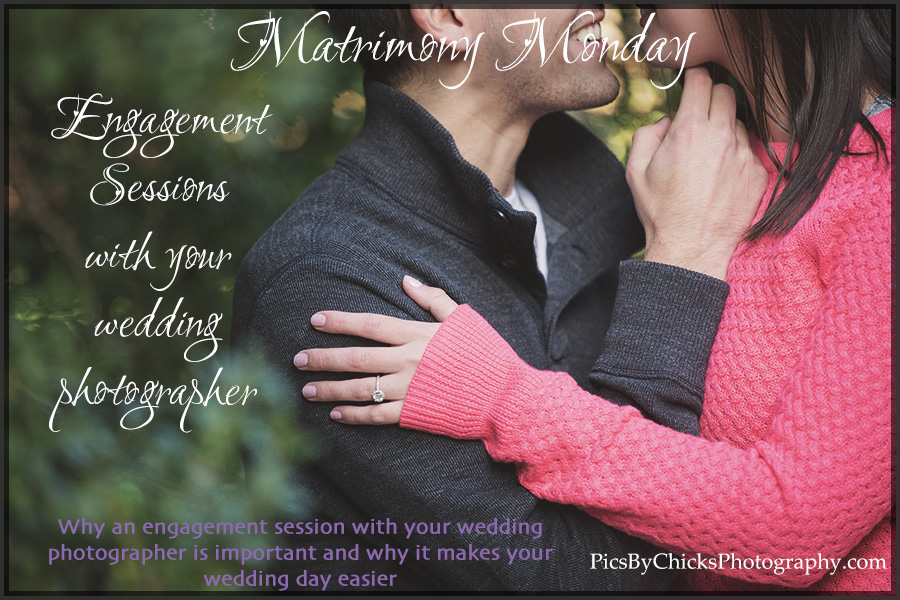 pittsburgh wedding photographers Pics By Chicks Photography discuss why an engagement session with your wedding photographer is important